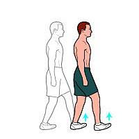 heeltoewalk