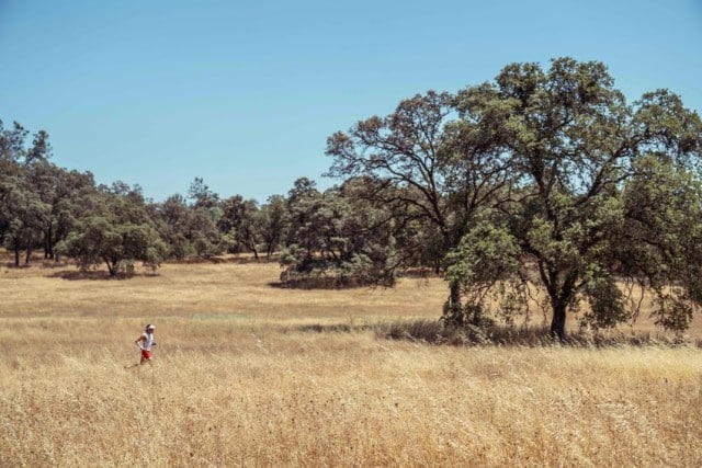 Ryan Sandes running alone in a dry field © Dean Leslie/ The Wandering Fever
