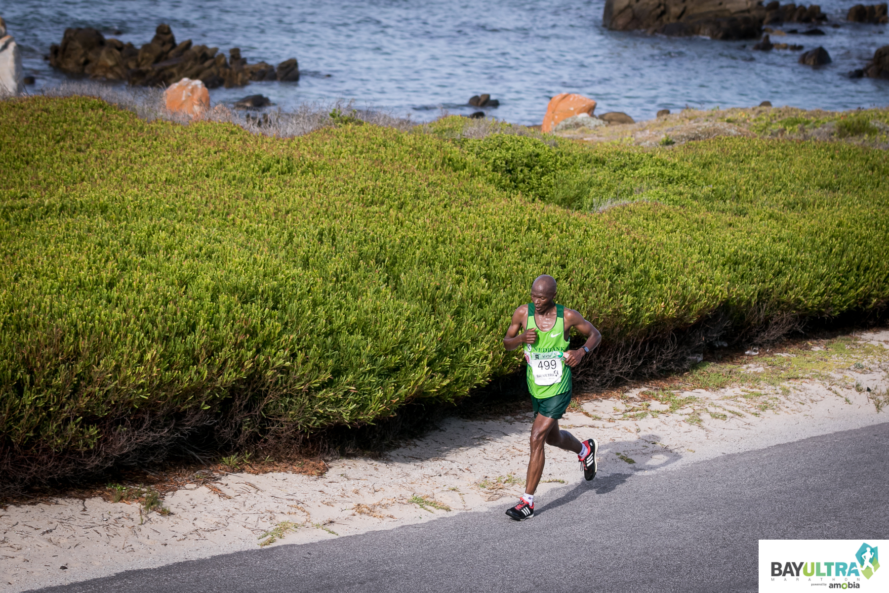Bay Ultra Marathon