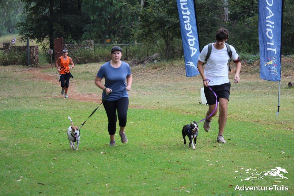 AdventureTails Pet-Friendly Trail Run