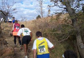 Afriforum Springbok Vasbyt Run