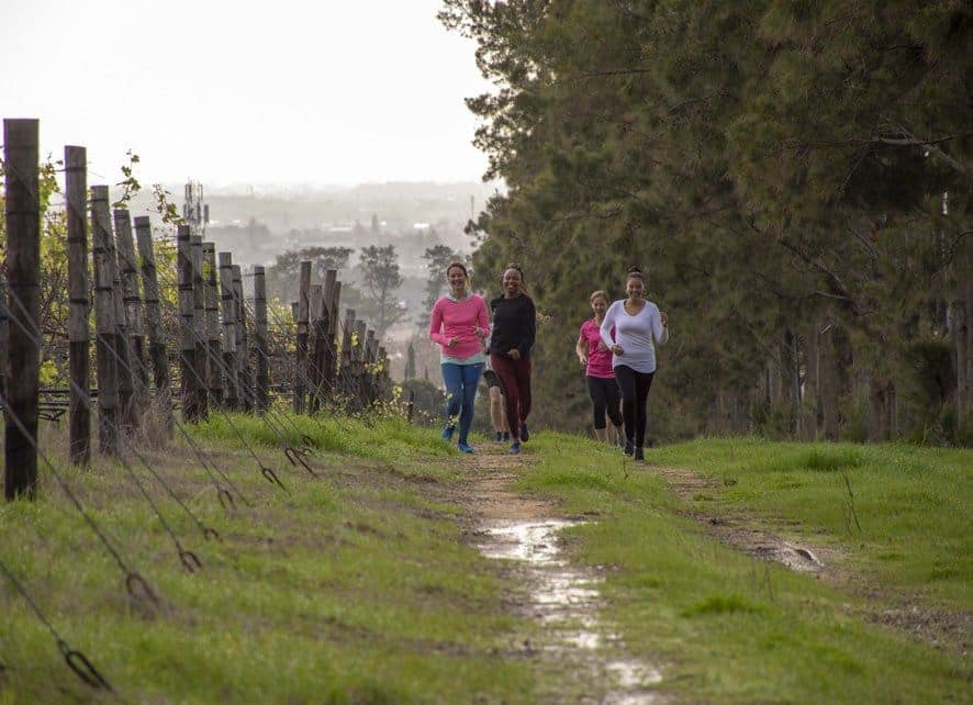 The Steenberg Spring Trail Run