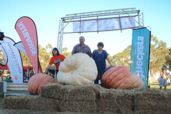 Pumpkin Festival Trail Run